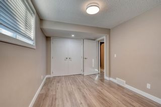 Photo 44: 79 Rundlefield Close NE in Calgary: Rundle Detached for sale : MLS®# A1040501