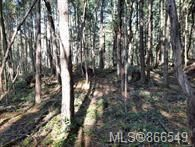 Photo 12: Lot 170 Halibut Hill in : Isl Mudge Island Land for sale (Islands)  : MLS®# 866549