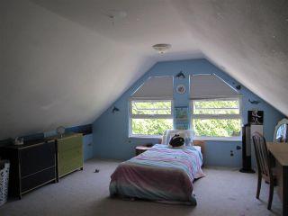 Photo 6: 23280 118 Avenue in Maple Ridge: Cottonwood MR House for sale : MLS®# R2058879
