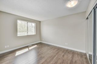 Photo 8: 17 MARTINDALE Boulevard NE in Calgary: Martindale House for sale : MLS®# C4121854