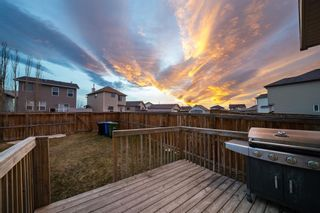 Photo 30: 64 Covepark Rise NE in Calgary: Coventry Hills Detached for sale : MLS®# A1100887