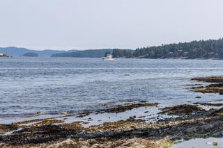 Photo 81: 1290 Lands End Rd in : NS Lands End House for sale (North Saanich)  : MLS®# 880064