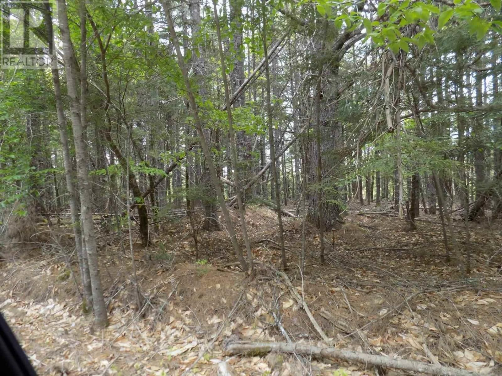 Main Photo: Lots 36 & 37 Hidden Hills Road in Labelle: Vacant Land for sale : MLS®# 202116791
