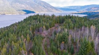 Photo 20: S/W 1/4 IVY ROAD in KAMLOOPS: Eagle Bay Land Only for sale (Shuswap Lake)  : MLS®# 156633