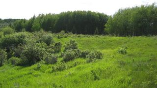 Photo 2: TWP RD 272 & RR 41 in Rural Rocky View County: Rural Rocky View MD Residential Land for sale : MLS®# A1127957