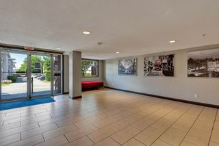 """Photo 23: 433 5660 201A Street in Langley: Langley City Condo for sale in """"Paddington Station"""" : MLS®# R2596042"""