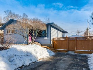 Photo 48: 95 Ferncliff Crescent SE in Calgary: Fairview Detached for sale : MLS®# A1064499
