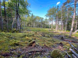 Photo 2: Lot 35 Wall Street in Cape George: 305-Richmond County / St. Peters & Area Vacant Land for sale (Highland Region)  : MLS®# 202123287
