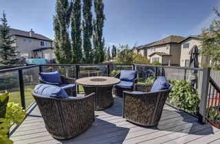 Photo 33: 17 Cranberry Lane SE in Calgary: Cranston Detached for sale : MLS®# A1142868