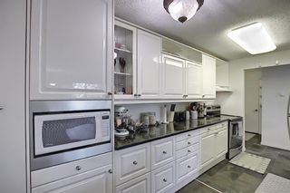 Photo 11: 202 1513 26th Avenue SW 26th Avenue SW in Calgary: South Calgary Apartment for sale : MLS®# A1117931