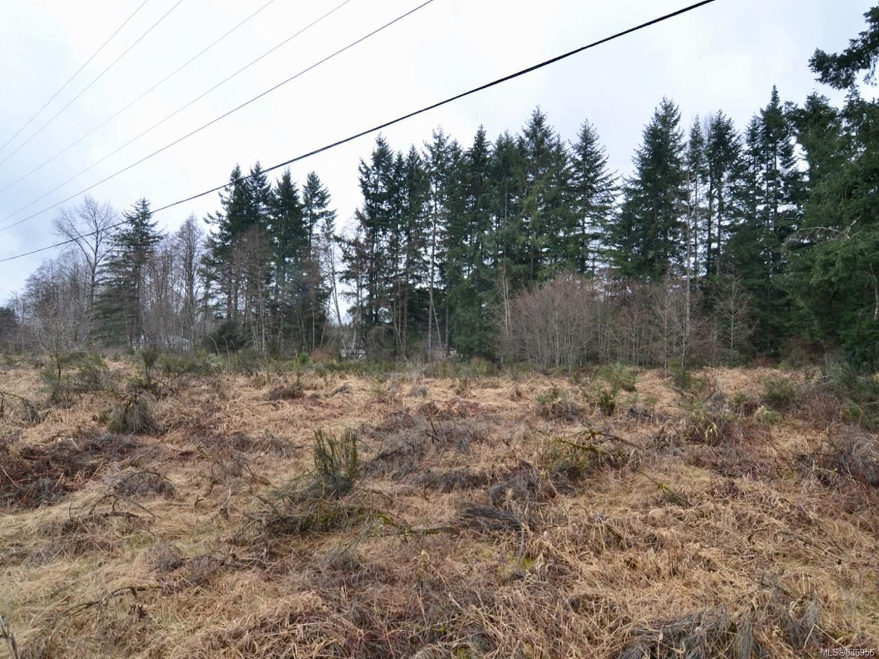 Photo 6: Photos: Lot A Ulverston Ave in CUMBERLAND: CV Cumberland Other for sale (Comox Valley)  : MLS®# 836956