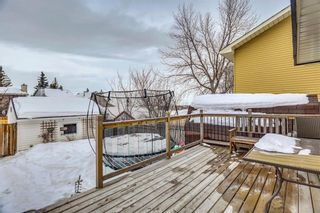 Photo 28: 207 STRATHEARN Crescent SW in Calgary: Strathcona Park House for sale : MLS®# C4165815