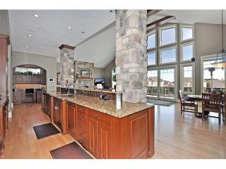 Photo 9: 18 DISCOVERY VISTA Point(e) SW in Calgary: Discovery Ridge House for sale : MLS®# C4018901