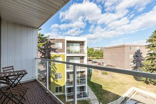 Photo 4: 401C 4455 Greenview Drive NE in Calgary: Greenview Apartment for sale : MLS®# A1052674