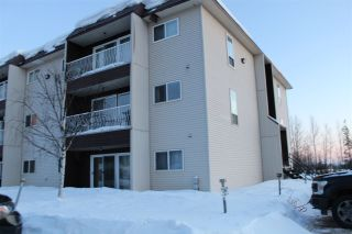 Photo 22: 201 101 MCINTYRE Drive in Mackenzie: Mackenzie -Town Condo for sale (Mackenzie (Zone 69))  : MLS®# R2536279