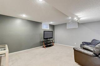 Photo 16: 3007 36 Street SW in Calgary: Killarney/Glengarry Detached for sale : MLS®# A1149415