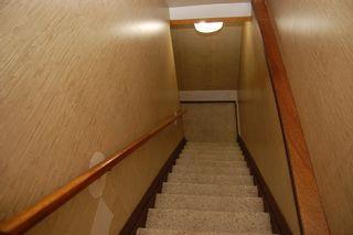 Photo 24: 4344 114 Street in Edmonton: Zone 16 House for sale : MLS®# E4252716