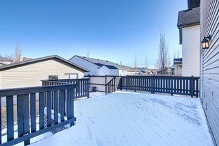 Photo 42: 253 Elgin Way SE in Calgary: McKenzie Towne Detached for sale : MLS®# A1087799