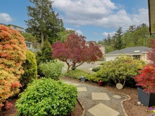 Photo 42: 3908 Lianne Pl in : SW Strawberry Vale House for sale (Saanich West)  : MLS®# 875878