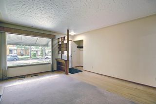Photo 17: 12021 79 Street in Edmonton: Zone 05 House for sale : MLS®# E4251373
