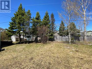 Photo 6: 8 Evergreen Boulevard in Lewisporte: House for sale : MLS®# 1226650