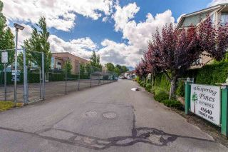 Photo 17: 50 45640 STOREY Avenue in Sardis: Sardis West Vedder Rd Townhouse for sale : MLS®# R2377820