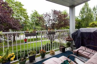 """Photo 17: 207 5465 201 Street in Langley: Langley City Condo for sale in """"Briarwood"""" : MLS®# R2088449"""