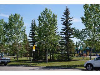 Photo 28: 25 MARTIN CROSSING Green NE in Calgary: Martindale House for sale : MLS®# C4017520