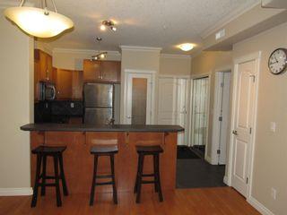 Photo 12: 329 10121 80 Avenue in Edmonton: Zone 17 Condo for sale : MLS®# E4255025