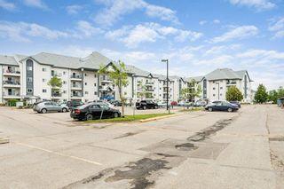 Photo 38: 307 9620 174 Street in Edmonton: Zone 20 Condo for sale : MLS®# E4253956