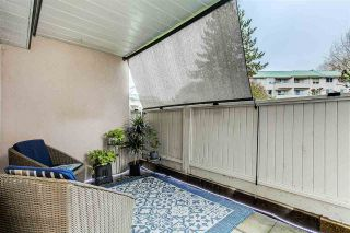 """Photo 19: 131 33173 OLD YALE Road in Abbotsford: Central Abbotsford Condo for sale in """"Sommerset Ridge"""" : MLS®# R2557153"""
