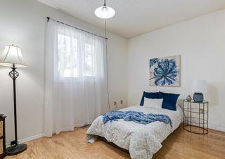 Photo 18: 387 Maitland Crescent NE in Calgary: Marlborough Park Detached for sale : MLS®# A1126572