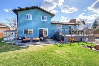 Photo 38: 420 Templeby Place NE in Calgary: Temple Detached for sale : MLS®# A1107183