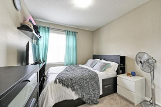 Photo 20: 140 COPPERPOND Villa SE in Calgary: Copperfield Row/Townhouse for sale : MLS®# C4303555