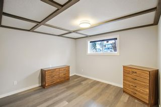 Photo 23: 4131 Doverview Drive SE in Calgary: Dover Detached for sale : MLS®# A1063702