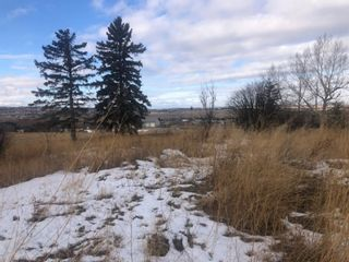Photo 14: 16022 402 Avenue E: Rural Foothills County Land for sale : MLS®# A1051546