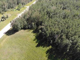 Photo 4: 50 Ave RR 281: Rural Wetaskiwin County Rural Land/Vacant Lot for sale : MLS®# E4191216