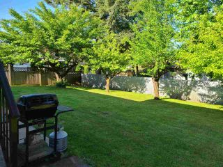 Photo 38: 3858 CHADSEY Crescent in Abbotsford: Central Abbotsford House for sale : MLS®# R2583518