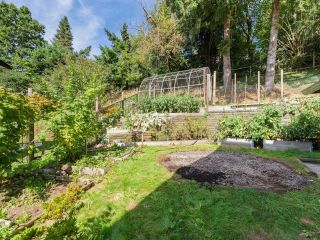 Photo 29: 8260 VIOLA Place in Mission: Mission BC House for sale : MLS®# R2615740