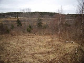 Photo 6: LOT PLEASANT VALLEY in Yarmouth: County Hwy 340 Vacant Land for sale : MLS®# 4868156