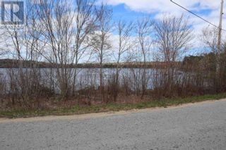 Photo 11: Lot St Catherines River Road in Port Joli: Vacant Land for sale : MLS®# 202111302