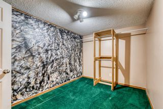 Photo 22: 220 78 Avenue SE in Calgary: Fairview Detached for sale : MLS®# A1063435