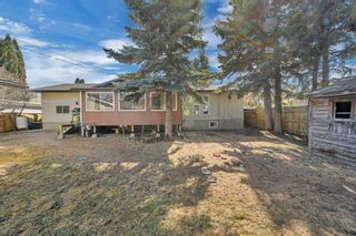 Photo 6: 5122 44 Street: Olds Detached for sale : MLS®# A1090118