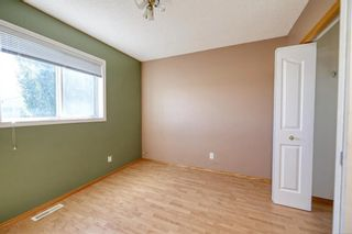 Photo 31: 172 ERIN MEADOW Way SE in Calgary: Erin Woods Detached for sale : MLS®# A1028932