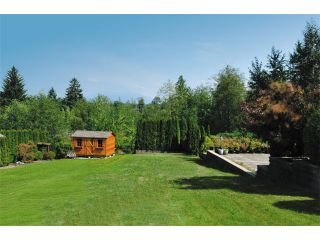 Photo 4: New listing, Maple Ridge