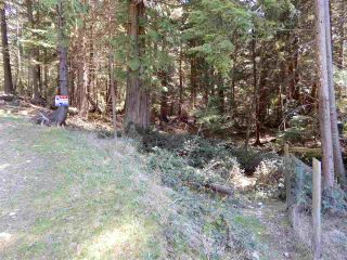 "Photo 3: LOT 3 FORIN ROAD: Keats Island Land for sale in ""EASTBOURNE"" (Sunshine Coast)  : MLS®# R2459870"