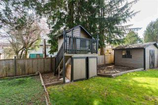Photo 15: 21816 DONOVAN Avenue in Maple Ridge: West Central House for sale : MLS®# R2560763