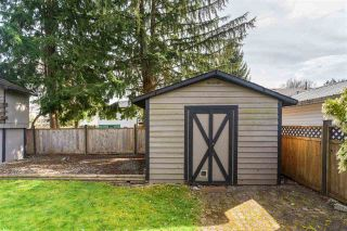 Photo 19: 21816 DONOVAN Avenue in Maple Ridge: West Central House for sale : MLS®# R2560763