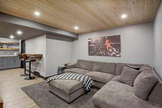 Photo 20: 161 DOUGLASBANK Way SE in Calgary: Douglasdale/Glen Detached for sale : MLS®# A1011698