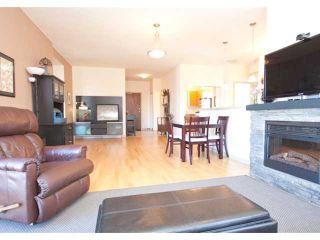Photo 16: # 405 14 E ROYAL AV in New Westminster: Fraserview NW Condo for sale : MLS®# V1105870